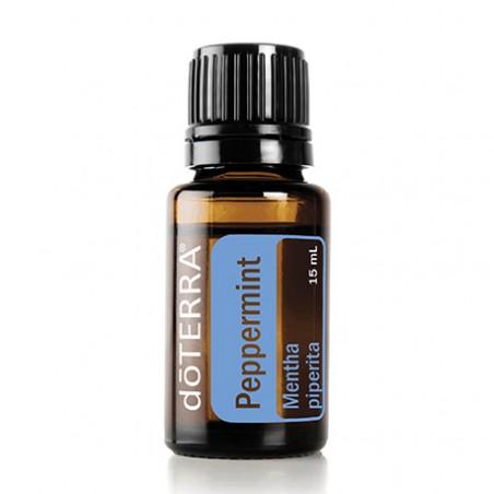 Peppermint Mentha piperita(Hortelã Pimenta)